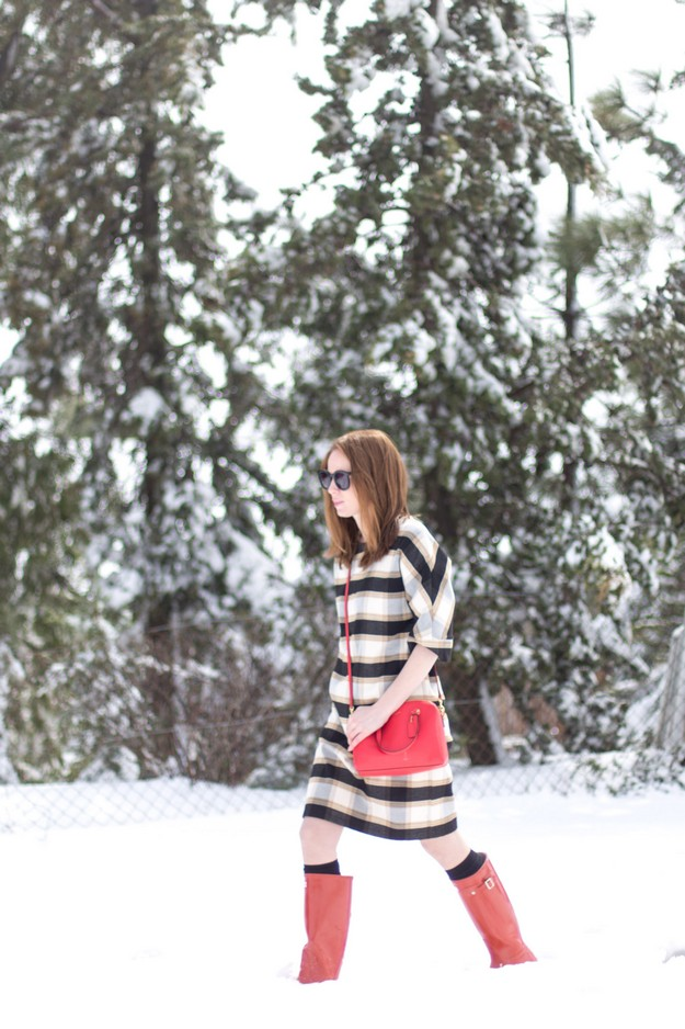 Winter wunderland_00015